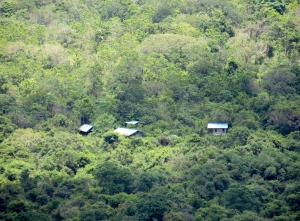 Some houses spread in the deep jungle.