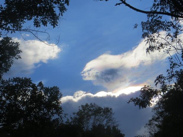 The Sky(4)
