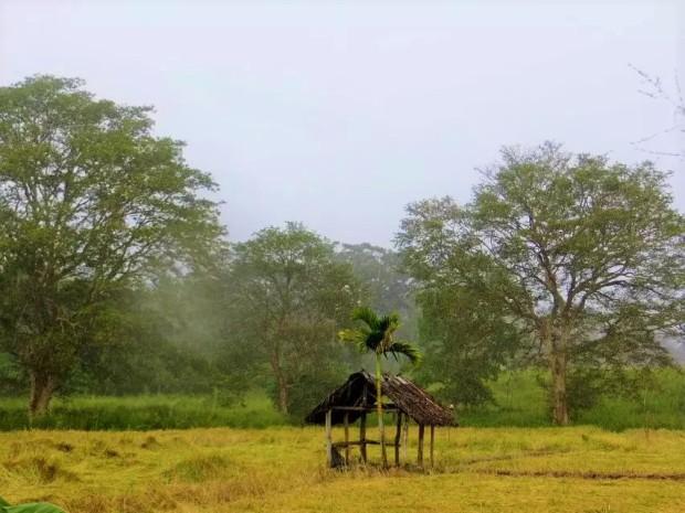 --- Sigiriya, Sri Lanka, 2015.3 | 斯里兰卡·锡吉里耶